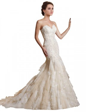 Mermaid Sweetheart Chapel Train Long Ivory & Champagne Lace & Tulle Iris Wedding Dress for Sale